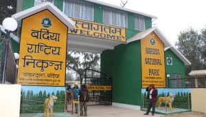 National Park Gate Bardia